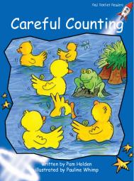 CarefulCounting