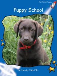 PuppySchool