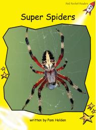 SuperSpiders
