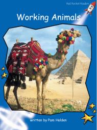 WorkingAnimals