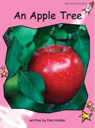 AnAppleTree.png