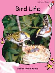 BirdLife.png