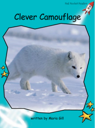 CleverCamouflage.png