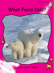 WhatFeelsCold.png
