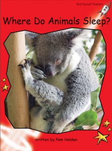 WhereDoAnimalsSleep.png