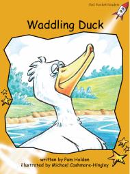Waddling Duck