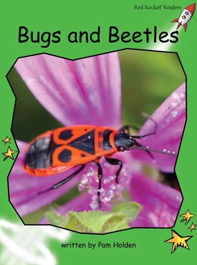 BugsAndBeetles.jpg